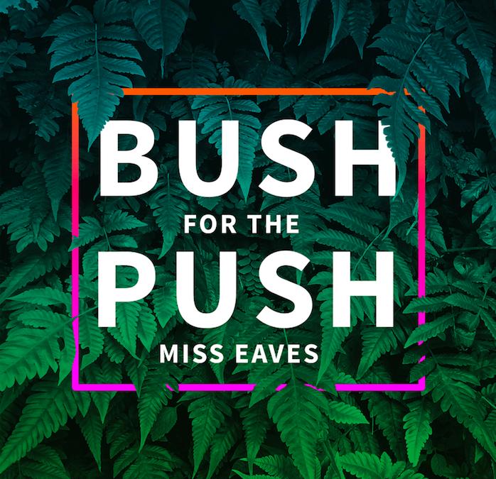 "Nameless Network: Premiere of Miss Eaves' Video For ""Bush For the Push"""