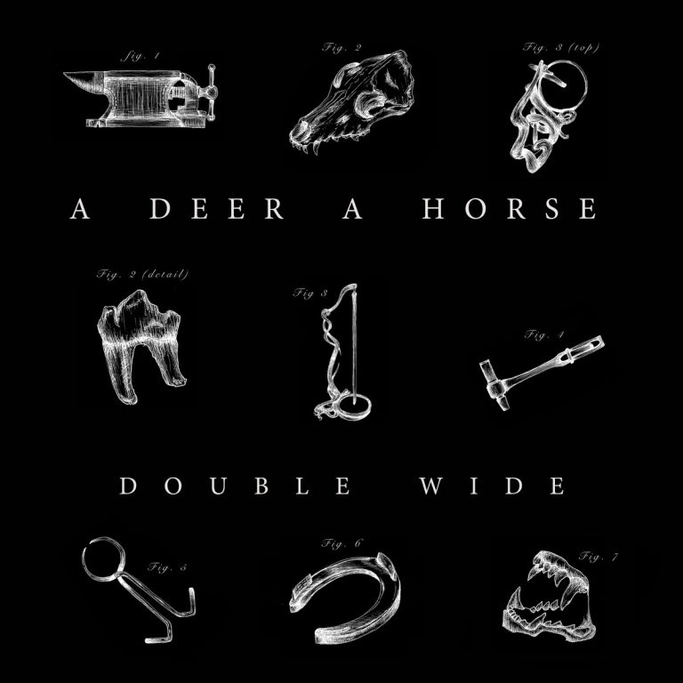 A Deer A Horse